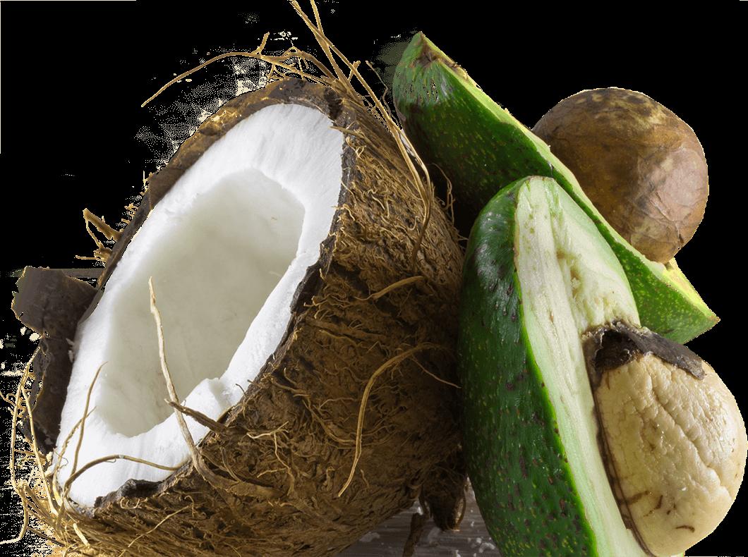 img-coconut@2x